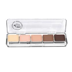 Highlight & Contouring Palette
